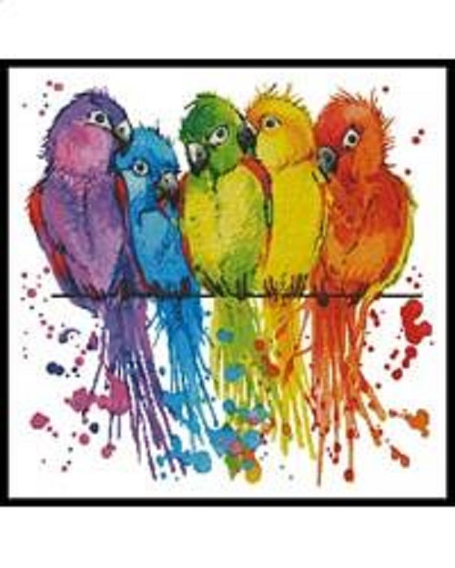 Colourful Birds Counted Cross Stitch Pattern