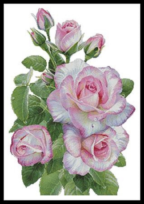 Morning Roses Counted Cross Stitch Pattern