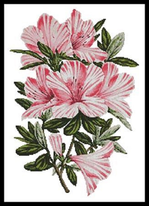 Pink Azaleas Counted Cross Stitch Pattern