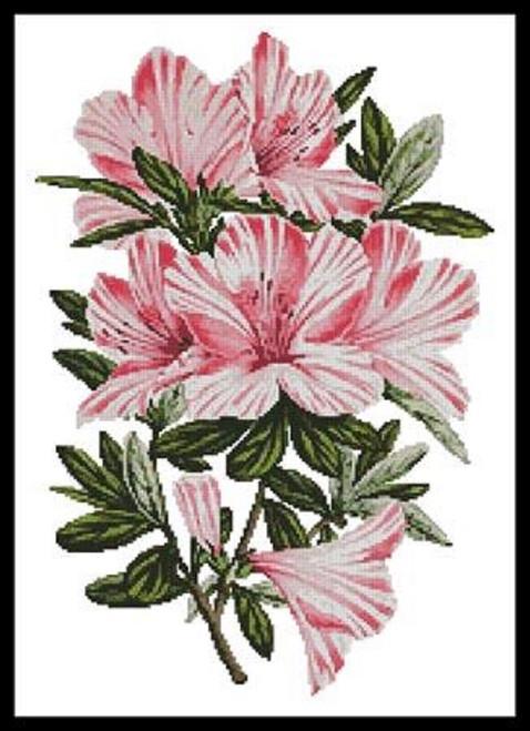Pink Azaleas Counted Cross Stitch Pattern