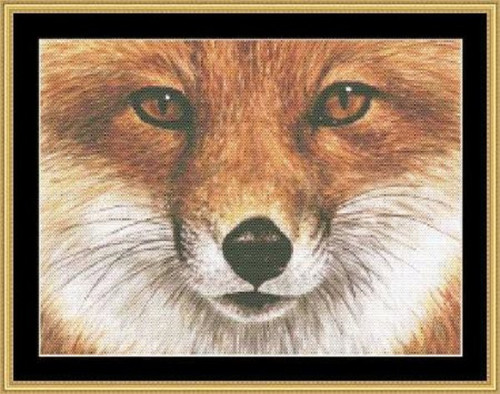 The Many Faces Collection-Red Fox Counted Cross Stitch Pattern