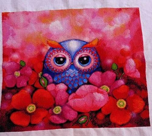 Mini Owl in Poppy Field