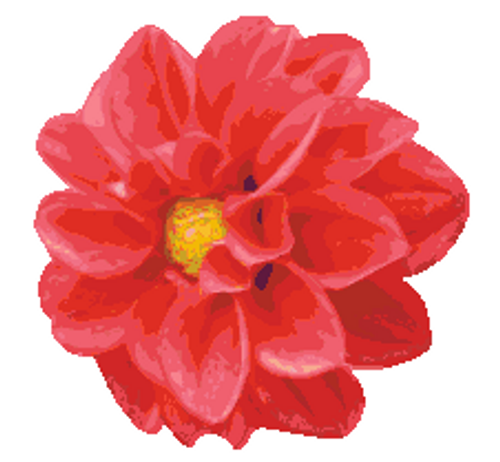 Dahlia Counted Cross Stitch Pattern - PDF Download