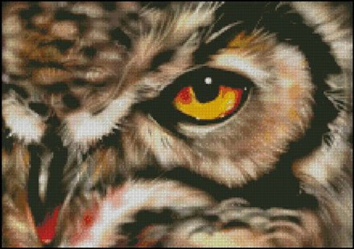 Through the Owl's Eye Counted Cross Stitch Pattern