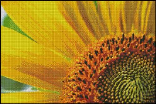 Sunburst Counted Cross Stitch Pattern