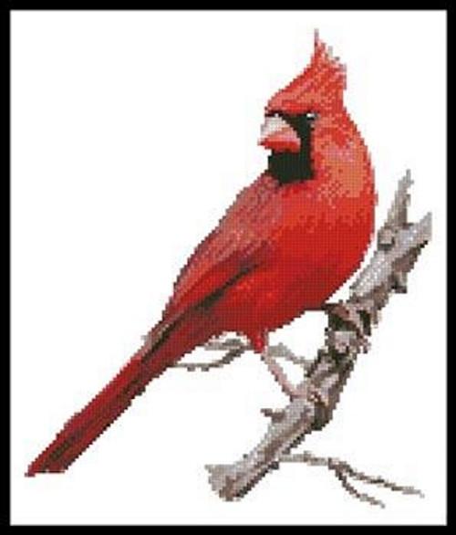 Cardinal Counted Cross Stitch Pattern