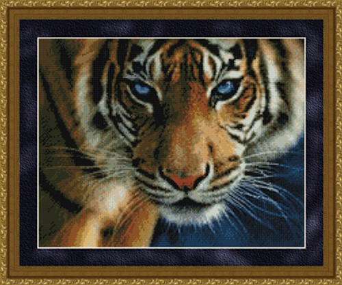 Blue Eyes - Tiger Counted Cross Stitch Pattern