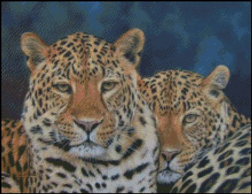 2 Leopards Counted Cross Stitch Pattern