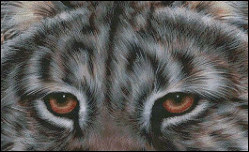 Eyes of the Predator Counted Cross Stitch Pattern