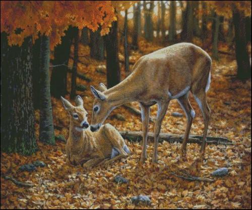 Autumn Innocence II Counted Cross Stitch Pattern