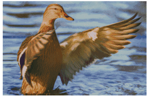 Mallard Counted Cross Stitch Pattern-PDF Download
