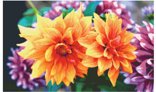 Dahlia Blooms - Fox Trails Needlework Counted Cross Stitch Pattern - PDF Download