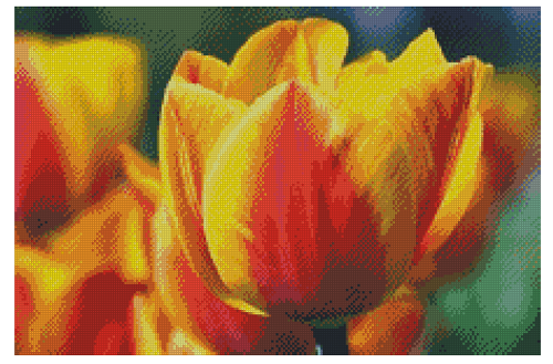 Tulips -Counted Cross Stitch Pattern - PDF Download - Fox Trails Needlework