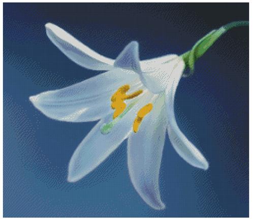 White Lily Counted Cross Stitch Pattern