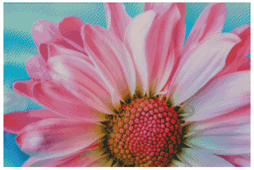 Pink Daisy Counted Cross Stitch Pattern -Paper Copy Shipped
