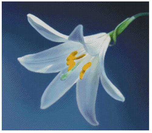 White Lily Counted Cross Stitch Pattern - Paper Copy Shipped