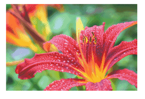 Red Lily Counted Cross Stitch Pattern