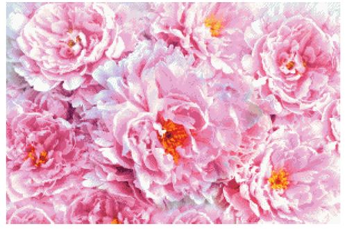 Peonies Counted Cross Stitch Pattern