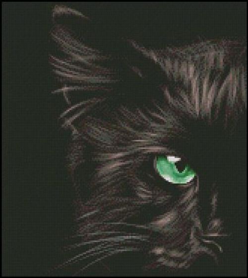 Cat's Eye - Shinysun's Counted Cross Stitch Pattern