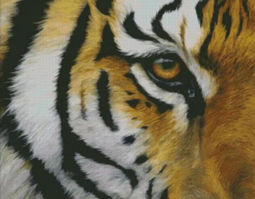 Eye of the Tiger - Shinysun's Counted Cross Stitch Pattern