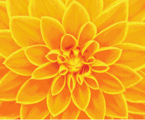 Yellow Dahlia Counted Cross Stitch Pattern - PDF Download
