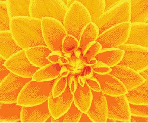 Yellow Dahlia Counted Cross Stitch Pattern
