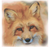 Fox Face Counted Cross Stitch Pattern - PDF Download