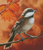 Autumn Chickadee - Shinysun's Cross Stitch Pattern