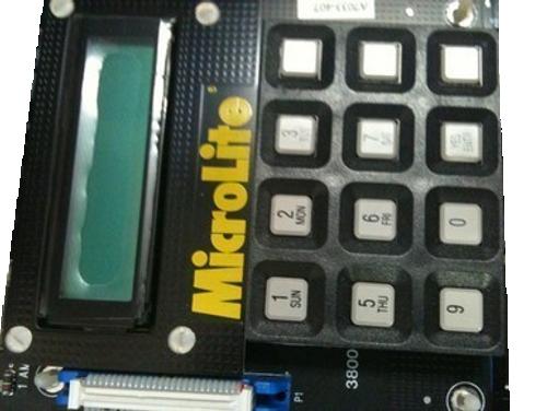 MicroLite local control unit, LCU
