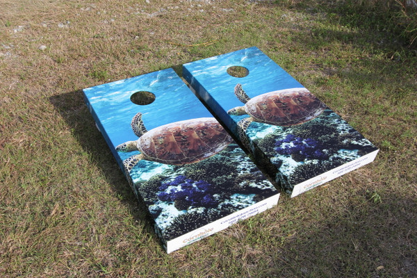 Loggerhead side wrapped graphics