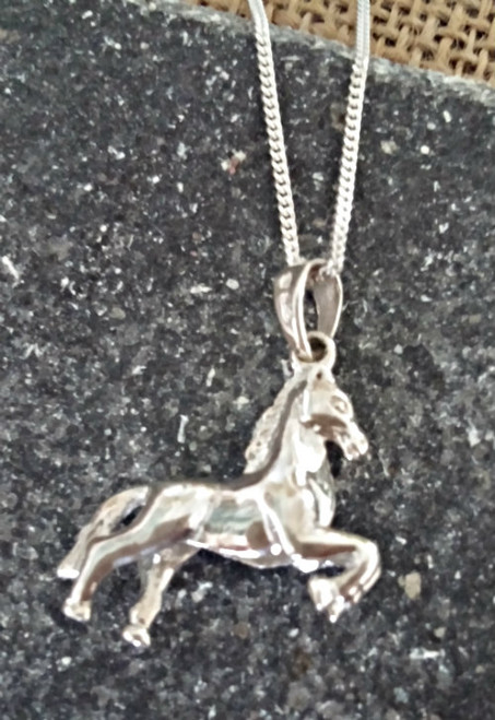 Horses For The Homeless Pendant Front view.