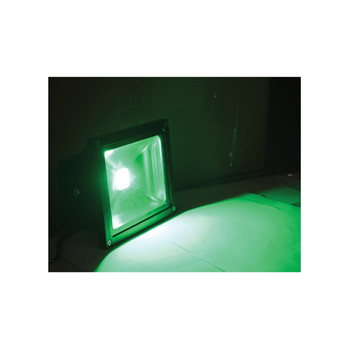 20 W Green Flood Light with Coloured LED