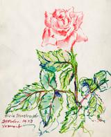 Singular Rose