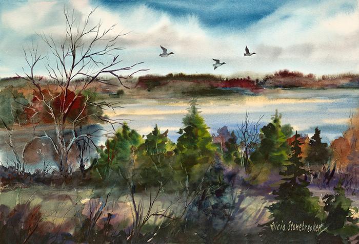 Three Ducks, Merrymeeting Bay, Maine