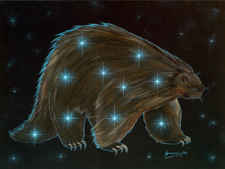 Dahsaní  - The Porcupine
