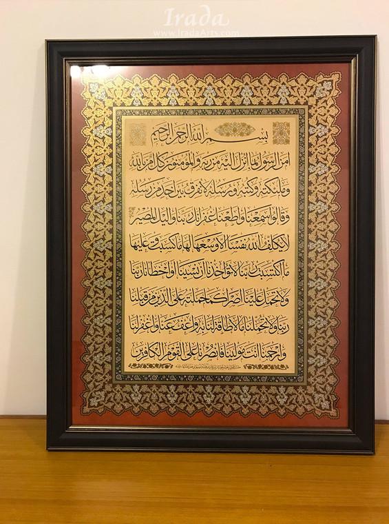 Amana Rasul - Framed Print - Version B