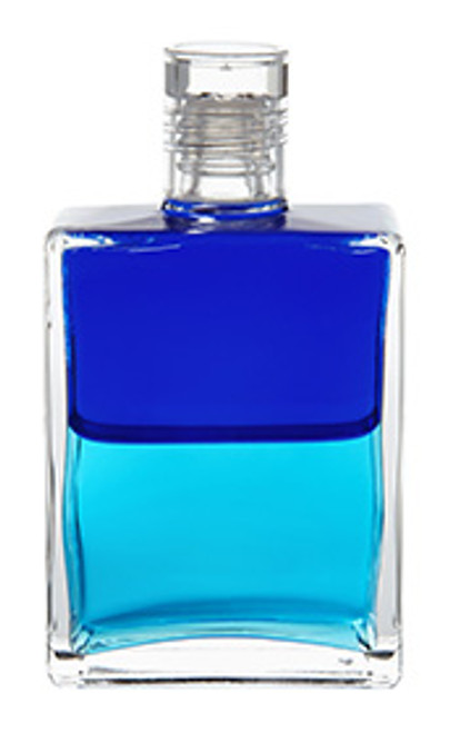 B33 - Dolphin Bottle / Peace with a Purpose Royal Blue / Turquoise