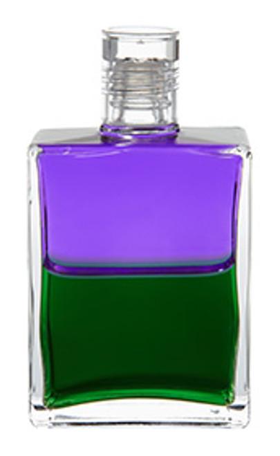 B38 - Troubadour 2 / Discernment Violet / Green