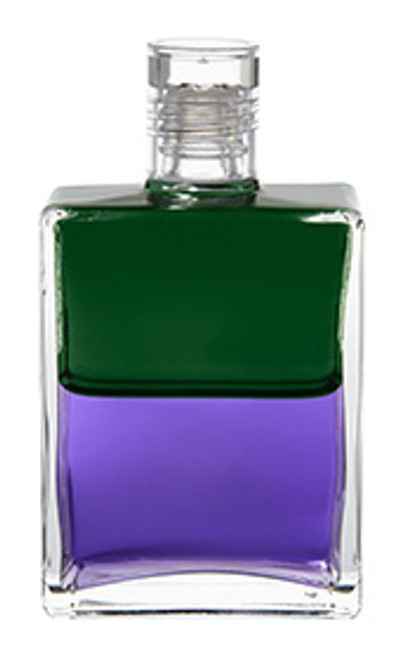 B17 - Troubadour 1 / The Hope Bottle Green / Violet