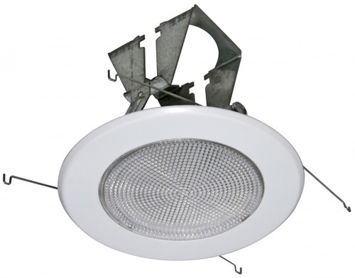 "(FL5) Fresnel Shower Trim for 5"" Recessed Can"
