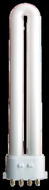 PL Lamp 13W Cool White