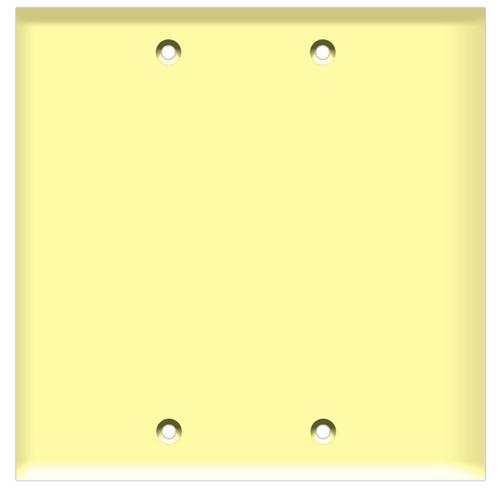 (W2BI) Blank Wall Plate 2-Gang Ivory