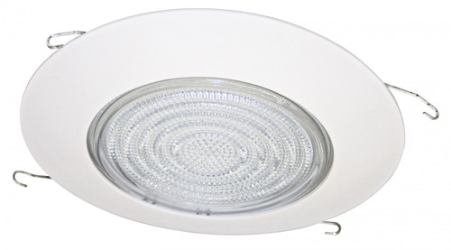 """Fresnel Shower Metal Trim for 6"""" Recessed Can"""
