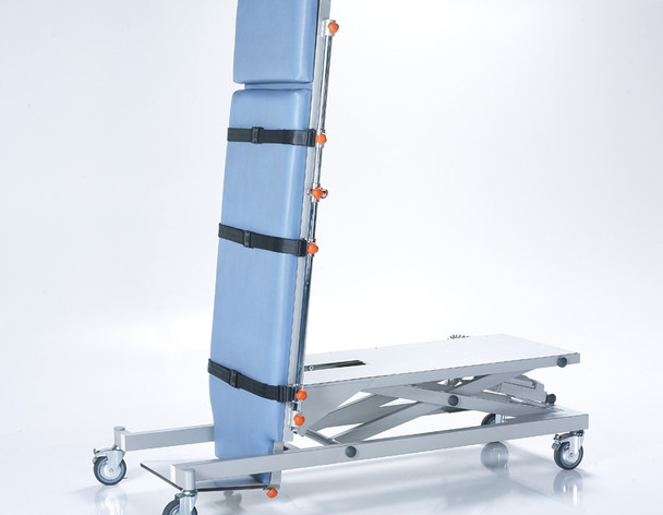 Patient Motorized Examination Coach - 2