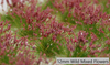 12mm XL Self-Adhesive Static Realistic Flower Tufts - Wild Spring