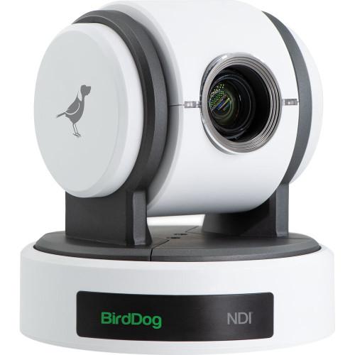 BirdDog Eyes P100 1080p Full NDI PTZ Camera (White)