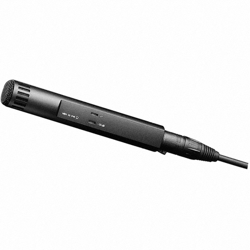 Sennheiser MKH50-P48 Supercardioid Condenser Microphone