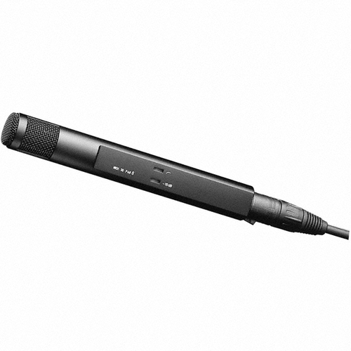 Sennheiser MKH30-P48 Bi-directional (figure 8) condenser mic