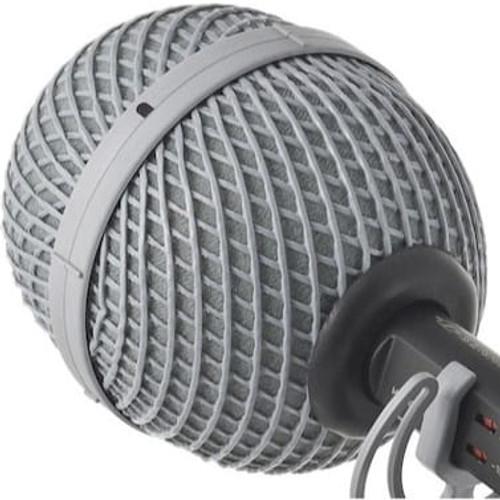 Rycote 011002 22mm BBG Windshield, 100mm diameter