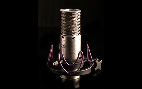 Aston Custom Rycote Shockmount For Spirit and Orgin, with mic.